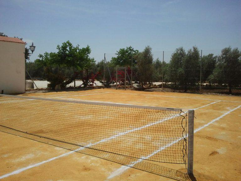 tenis entre olivos